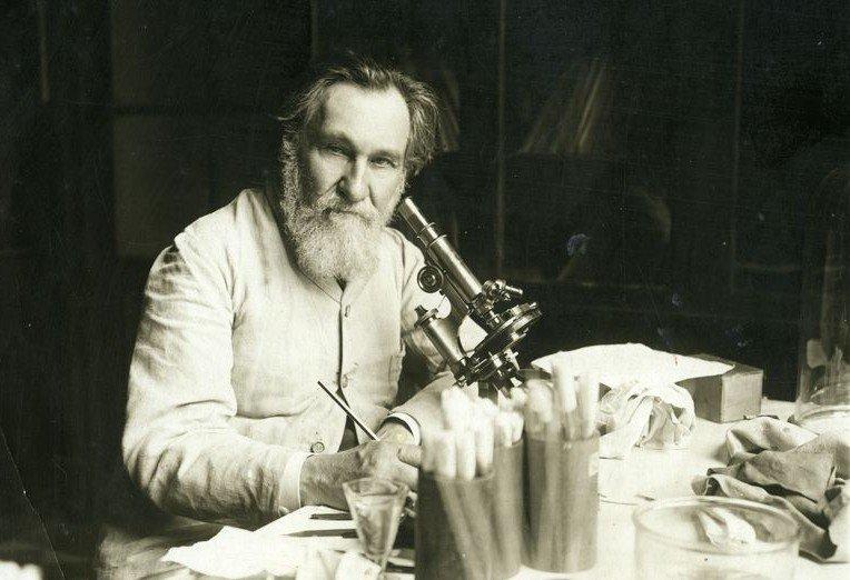 Илья Мечников