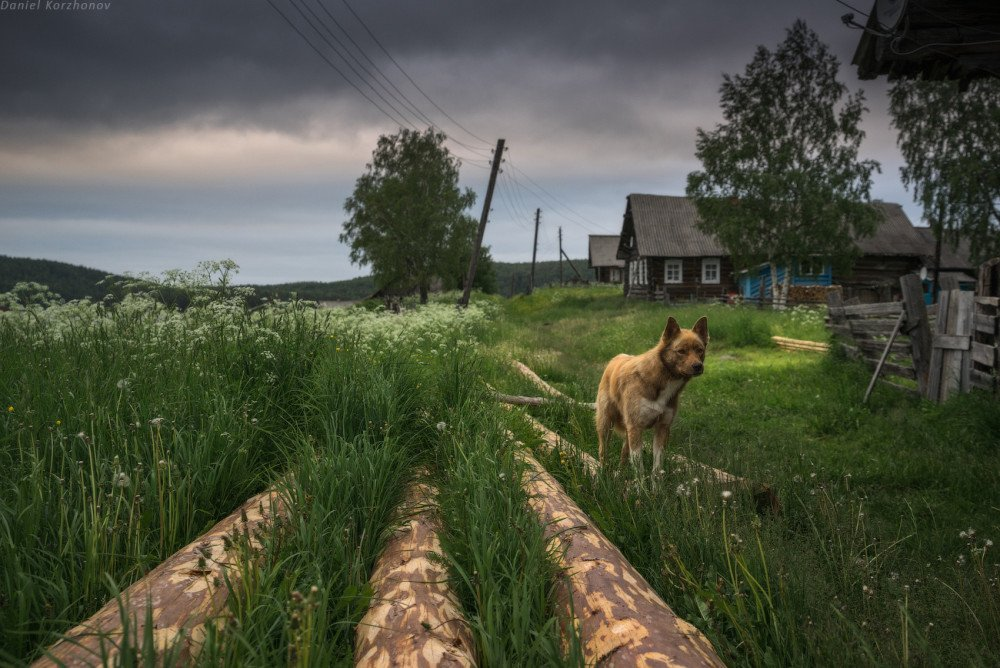 ДАРИТЕ ЛЮДЯМ КРАСОТУ - КЕНОЗЕРСКИЙ НАЦИОНАЛЬНЫЙ ПАРК РОССИИ