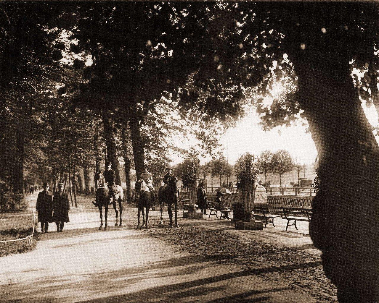 Конные прогулки в Летнем саду.