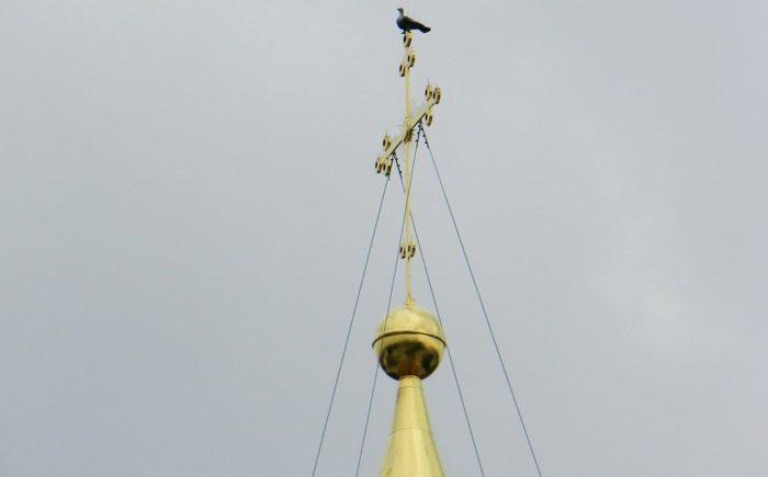 Sofijskij-sobor-golub